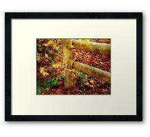 Autumn Hues ©  Framed Print