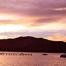 Akaroa's sunset beauty  by Ali Brown