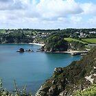 Cornwall's Charlestown by GlennB