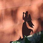 Angel's Shadow by nielsenca13