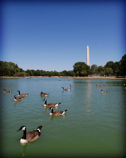 Monumental Geese by A Smith