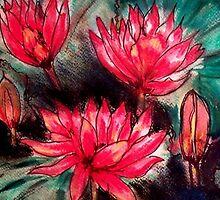 Pink Water Lillies by Angela Gannicott