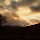 Watching over Rannoch Moor. by Aj Finan