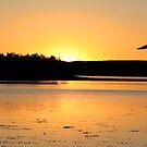 """Lake Moondarra"" by Sue  Fellows"