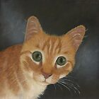 Malachy the ginger cat by Jodi Bassett