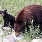 Momma and her Cub by Carol Bock