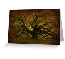 The Angel Oak in Charleston SC Greeting Card