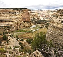 Yampa River - Castle Park 2 by Kim Barton