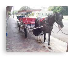Natchez Carriage Rides - Natchez, Mississippi Metal Print