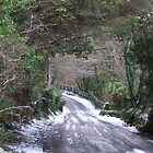 Lamorna In The Snow by Anne Sanders