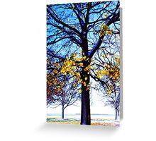 fall trees Greeting Card