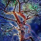 moon tree by brian gregory