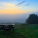 Picnic Table For One, Sunrise. County Durham. UK by David Lewins