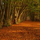 Golden leave carpet by Janone