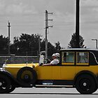 Driving Miss Daisy by jules572