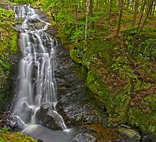 Falls and Gorge by Stephen Beattie