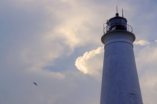 St. Marks Lighthouse - St. Marks, FL by jae1235