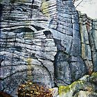 Rivelin Crags by Sue Nichol