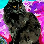 My Black Cat by irisgrover