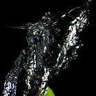 Lime Splash 3 by Hugh McKay