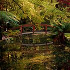 Alfred Nicholas Gardens by Mary Broome