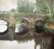 Bridge at Colyton by Catherine Hamilton-Veal  ©