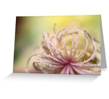 Pearly Curls Greeting Card