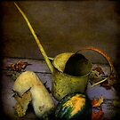 harvest still life #1 by dawne polis