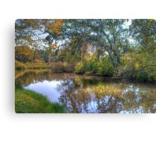 Lazy River Canvas Print