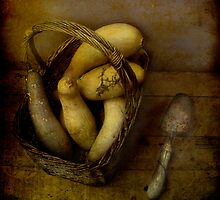 harvest still life #2 by dawne polis