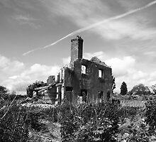 Forgotten by Paul Bettison