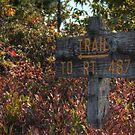 Trail To Rt. 487 sign by Aaron Campbell