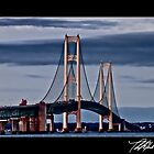 Mackinac Bridge by Theodore Black
