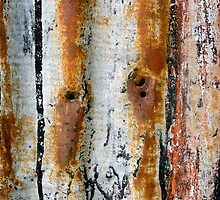 Rust in Autumn Hues by Jay Taylor