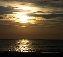 Golden Sunset by RebeccaBlackman