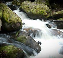 Toorongo Falls  2 by Callum Brown