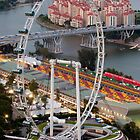 Singapore Flyer by Jason Pang, FAPS FADPA