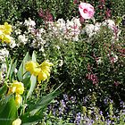 Country Garden by Barberelli
