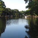 Sarah's Creek by Jennie L. Richards