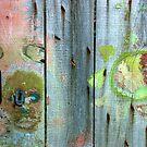 Ars-en-Ré - Neighbor's door. by Jean-Luc Rollier