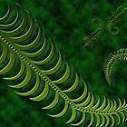 Jade Fern by Belinda Osgood
