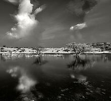 Reflections by Prasad