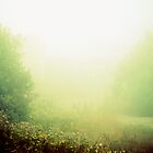 Foggy Path at Morning by H.L. Goyer