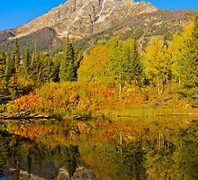 Fall Reflections in the Tetons by Luann wilslef