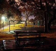 Playground After the Rain - Ridge Park, South Australia by Alex Frayne