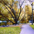 Sunday in the Park by rocamiadesign