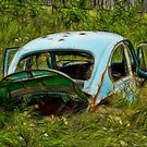 Abandoned Beetle by sundawg7
