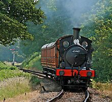 Steam Engine 65462 by Beverley Barrett