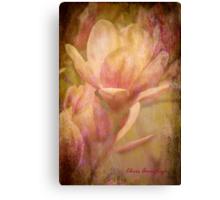 Magnolias 2 Canvas Print