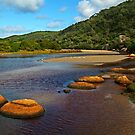 Tidal River,Wilsons Prom by Joe Mortelliti